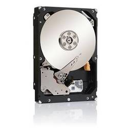 Seagate HDD SATA 2TB 7200RPM 128MB Constellation ES ST2000NM0033