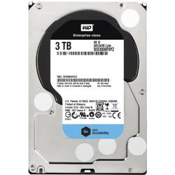 Western Digital HDD Server 3TB 7200RPM 64MB, SATA 3 WD3000F9YZ