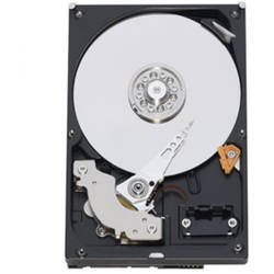 Western Digital HDD Desktop WD5000AAKX