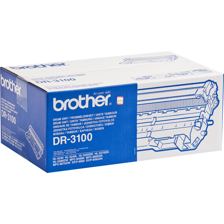 Drum Brother DR3100 poza 2021