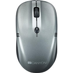 CANYON Wireless optical mouse 4 buttons, DPI 800/1200/1600, dark gray pearl glossy